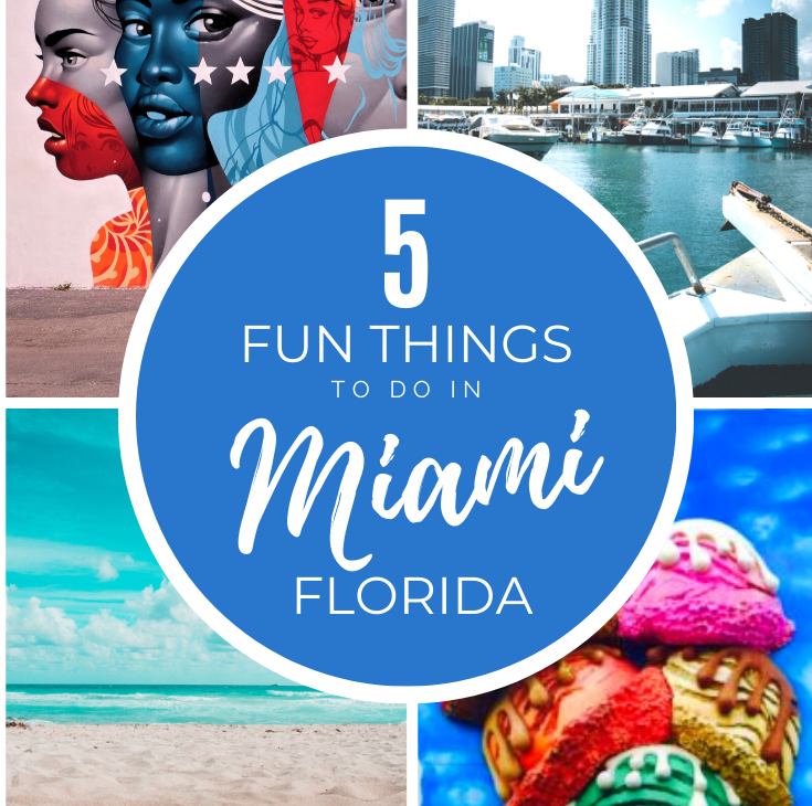 5 fun things to do in miami © hollydayz