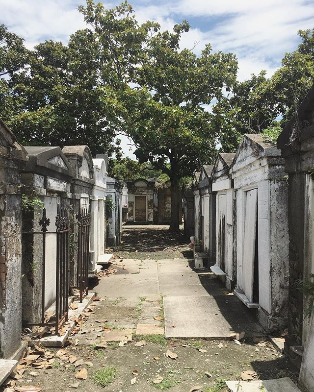 5 fun things to do in new orleans © HollyDayz