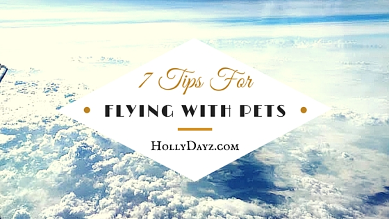 7 Tips For Flying With Pets