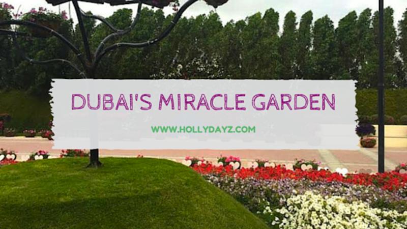 Visting the Dubai Miracle Garden