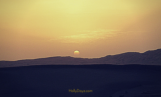 a safari in dubai's desert © hollydayz