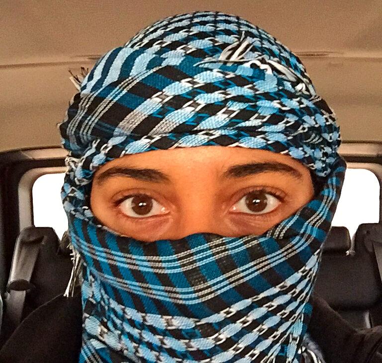 a safari in dubai's desert © hollydayz