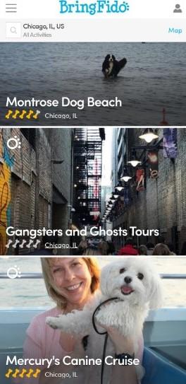 app of the month: bringfido ©hollydayz 2021